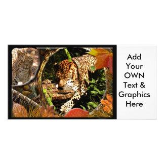 leopard-halloween-2010-0017 customized photo card