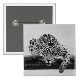 Leopard in black and white buttons