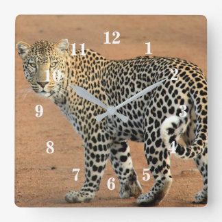 Leopard In the Jungle Square Wall Clock