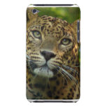 Leopard  iTouch Case iPod Touch Covers