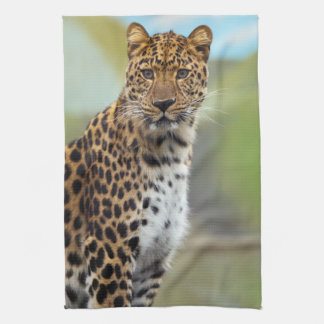 Leopard Kitchen Towel