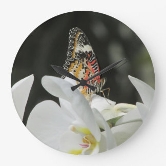 Leopard Lacewing Butterfly on White Orchid Clocks