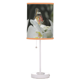 Leopard Lacewing Butterfly on White Orchid Lamps