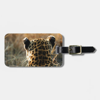 Leopard Looking Off Into Distance Luggage Tag
