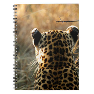 Leopard Looking Off Into Distance Note Book