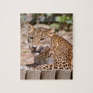 Leopard lying jigsaw puzzle