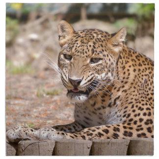 Leopard lying napkin