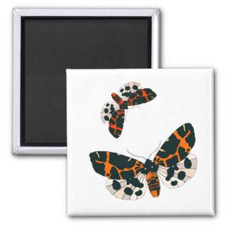 Leopard Moths in Flight Formation Square Magnet