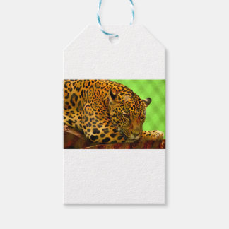 Leopard on Brown Log Gift Tags