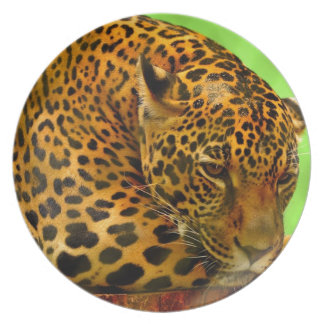 Leopard on Brown Log Plate