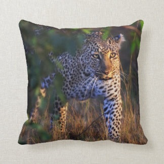 Leopard (Panthera Pardus) as seen in the Masai Throw Pillow