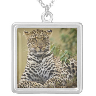 Leopard, Panthera pardus. Masai Mara Game Silver Plated Necklace