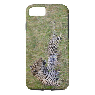 Leopard (Panthera pardus) resting in grass, iPhone 7 Case