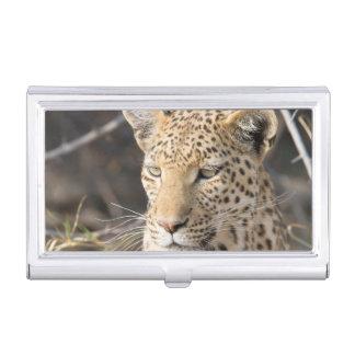 Leopard portrait business card holder