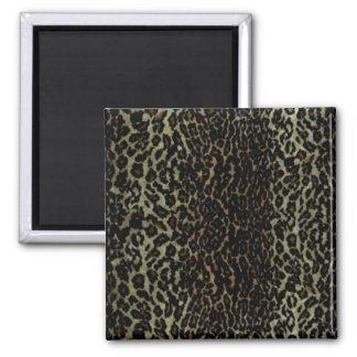 leopard print, Magnets