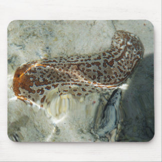 Leopard Sea Cucumber Mouse Pad