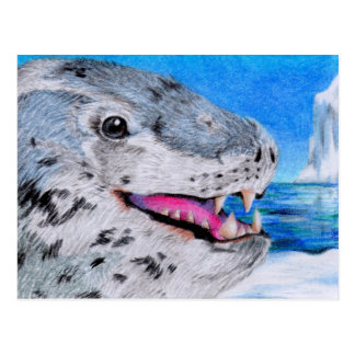 Leopard Seal Postcard