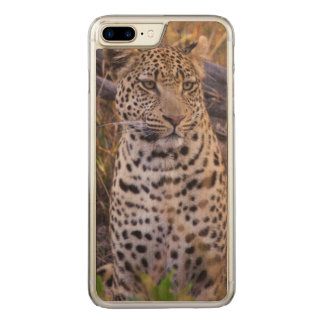 Leopard sitting, Botswana, Africa Carved iPhone 7 Plus Case