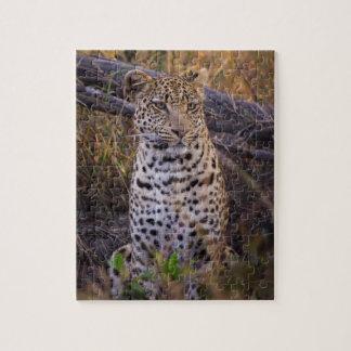 Leopard sitting, Botswana, Africa Jigsaw Puzzle