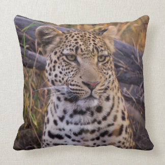 Leopard sitting, Botswana, Africa Throw Pillow
