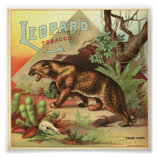 Leopard Tobacco 1900 Poster