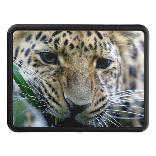 Leopard Tow Hitch Cover