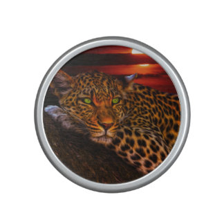 Leopard with Sunset Speaker