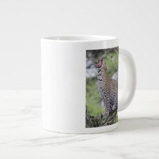 Leopard yawning, South Africa Large Coffee Mug