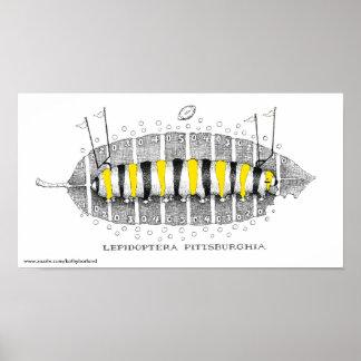Lepidoptera Pittsburghia-Zazzle, www.zazzle.com... Poster