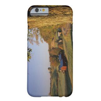 Les Etats-Unis, Vermont, Woodstock du sud, ferme Coque Barely There iPhone 6