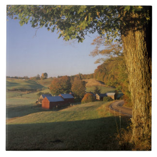 Les Etats-Unis, Vermont, Woodstock du sud, ferme d Grand Carreau Carré