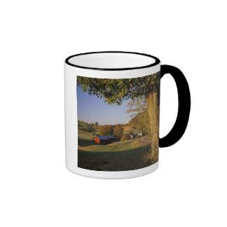 Les Etats-Unis, Vermont, Woodstock du sud, ferme d Mug À Café