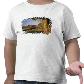 Les Etats-Unis, Vermont, Woodstock du sud, ferme T-shirts