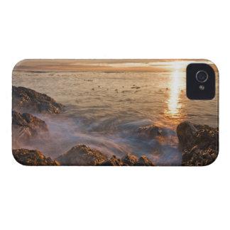 Les Etats-Unis, Washington, îles de San Juan.  Un Étui iPhone 4