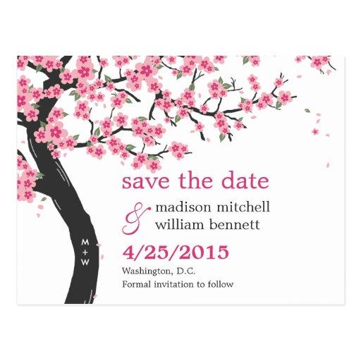 Les fleurs de cerisier sauvent la carte postale de