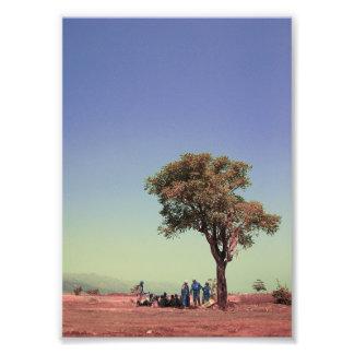 les gens et l'arbre impressions photographiques