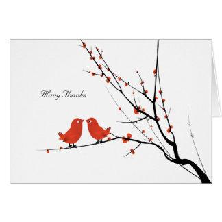 Les perruches d'écarlate ont personnalisé le Merci Cartes De Vœux