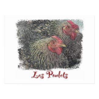 Les Poulets Postcard