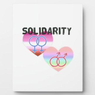Lesbian Gay Solidarity Plaque