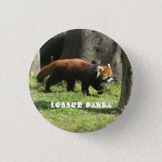Lesser panda 1 inch round button