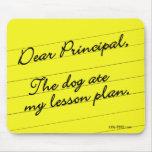 Lesson Plan Mouse Pads