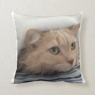 Let Holly comfort you Throw Pillow