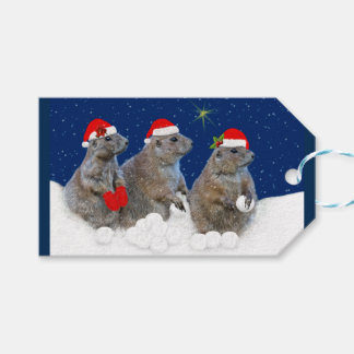 Let it Snow Christmas Tags Pack Of Gift Tags