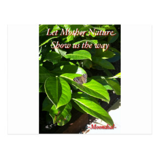 Let Mother Nature Show Us The Way - Butterfly Postcard