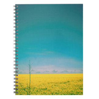 Let's go wait out in the fields notebook