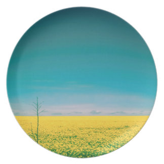 Let's go wait out in the fields plate