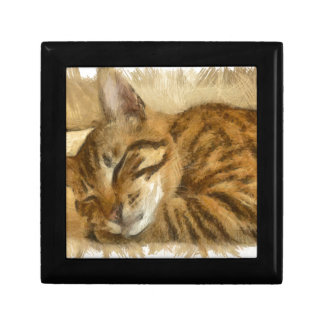 Let Sleeping Cats Lie Gift Box