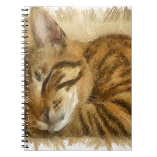 Let Sleeping Cats Lie Notebook