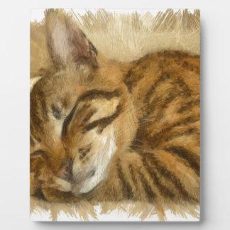 Let Sleeping Cats Lie Plaque