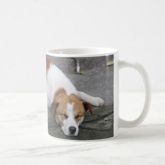 Let Sleeping Dogs Lie Coffee Mug